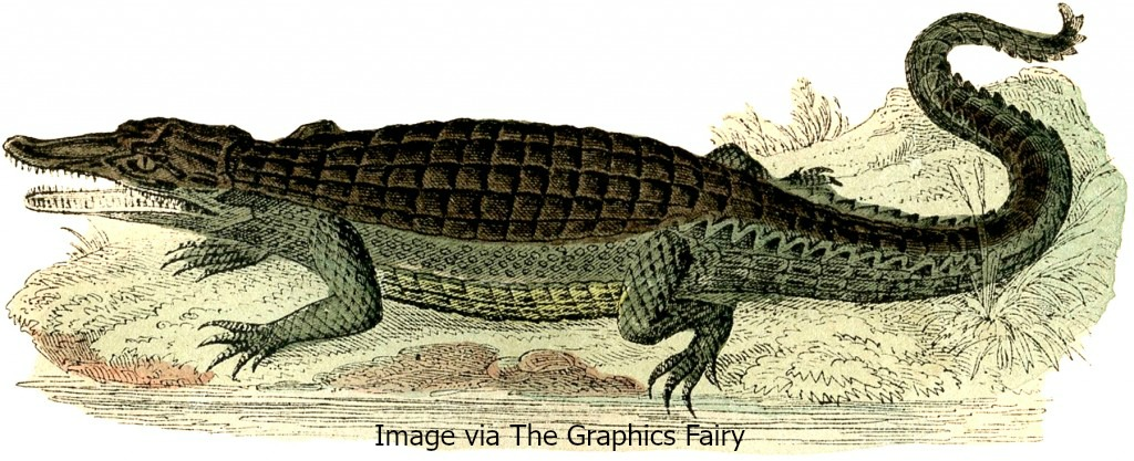 To learn more about the Mobile-Tensaw Delta, click on the gator.
