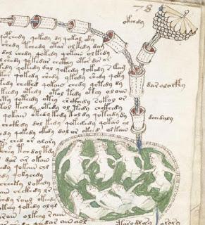Manoscritto-Voynich-dettaglio