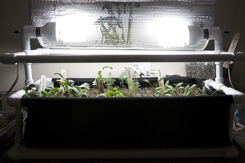 Indoor Garden Box Best With Indoor Vegetable Garden Box Pictures