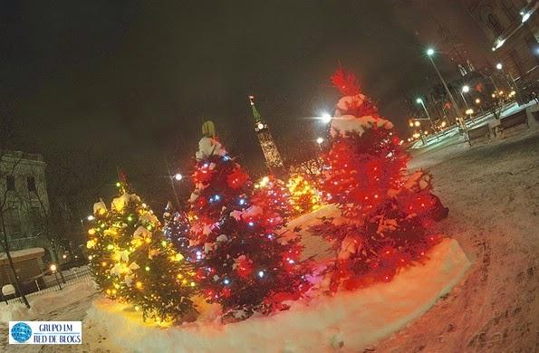 Los árboles de Navidad para decorar el exterior