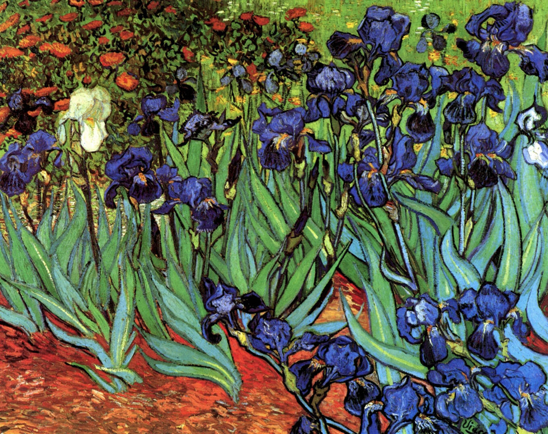 intelliblog art sunday van gogh 39 s irises
