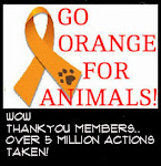 Let&#39;s turn Facebook Orange for Animal Cruelty Awareness