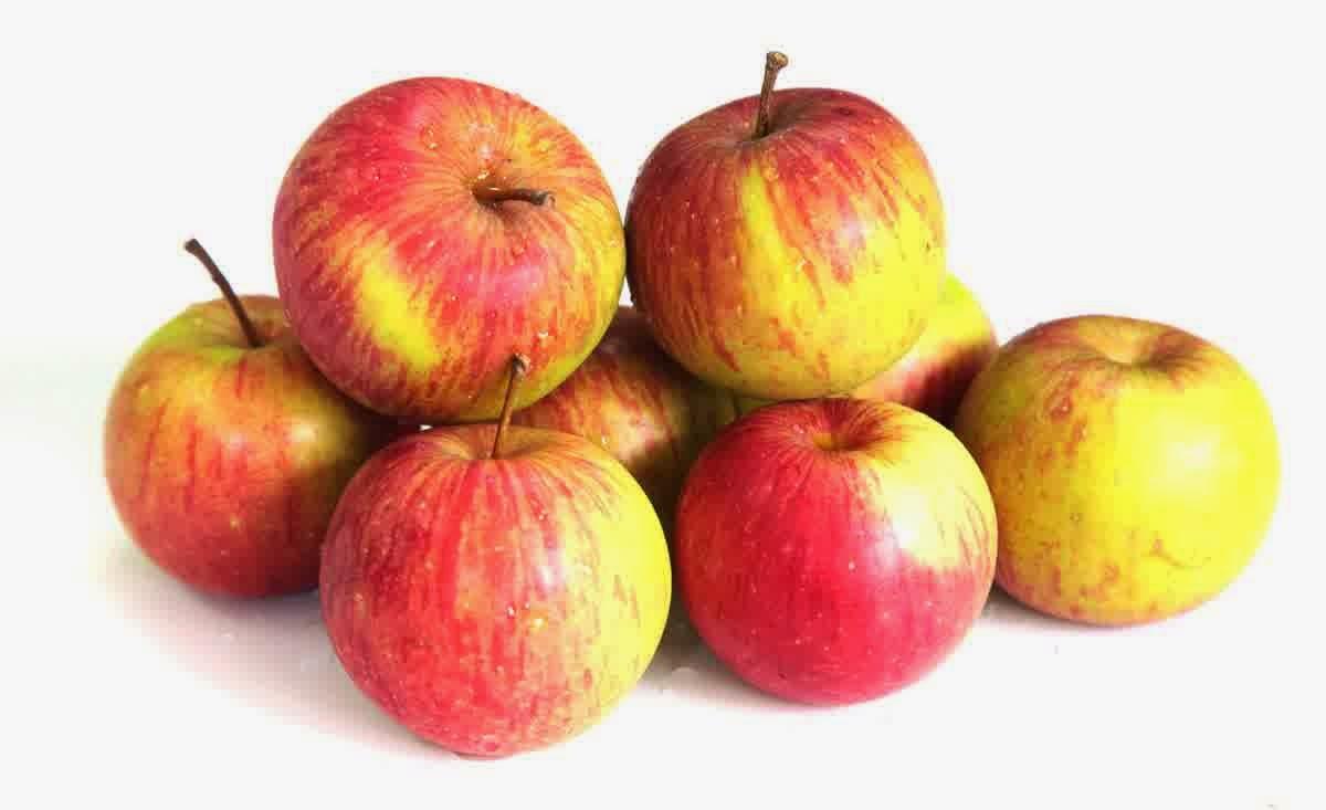 Apel adalah salah satu hal yang paling berpengaruh dalah perkembangan sejarah manusia