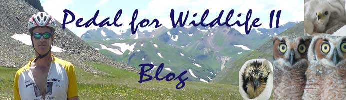 Pedal 4 Wildlife II Blog