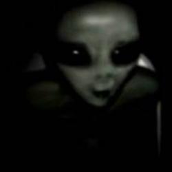 Extraterrestre capturado em araraquara
