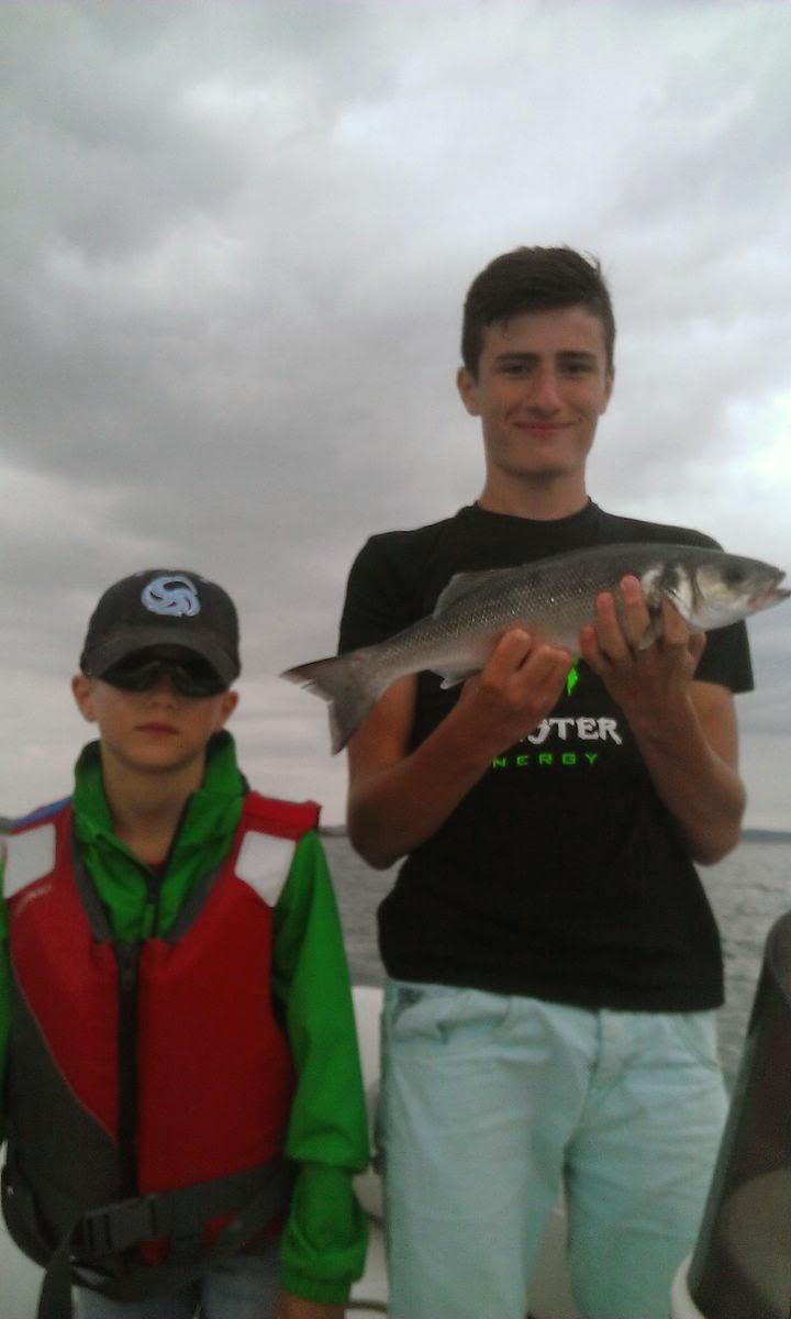 labrax, pêche en mer en Bretagne