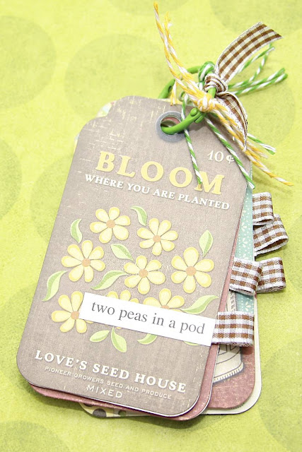 Two Peas In A Pod Mini Album | Monika Wright