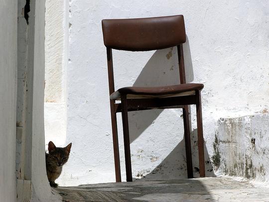Apeiranthos Naxos cat