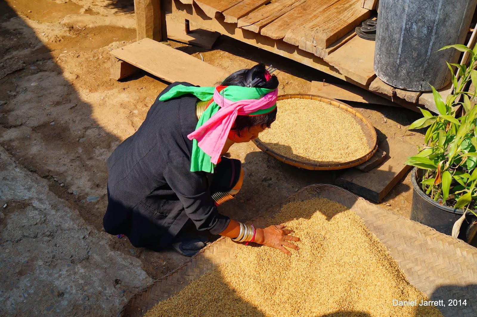 Huay Pu Keng (Baan Nam Piang Din) Woman Rice