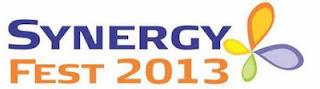 Synergy Fest 2013