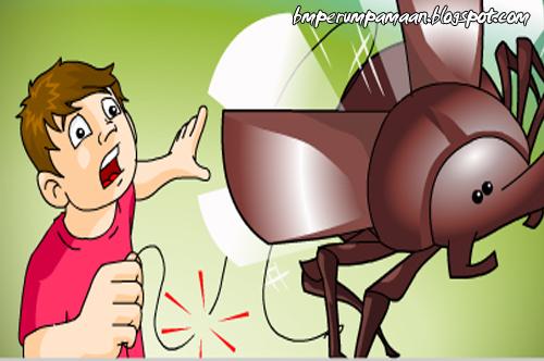 Perumpamaan Bagai Kumbang Putus Tali