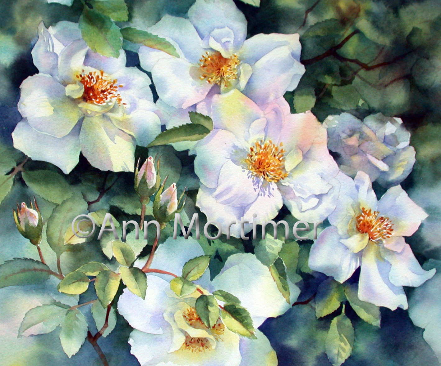 Ann 39 s watercolour studio nevada rose painting step by step for How to paint a rose in watercolor step by step