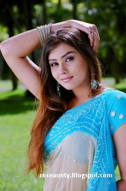 south indian actress namitha hot image gallery