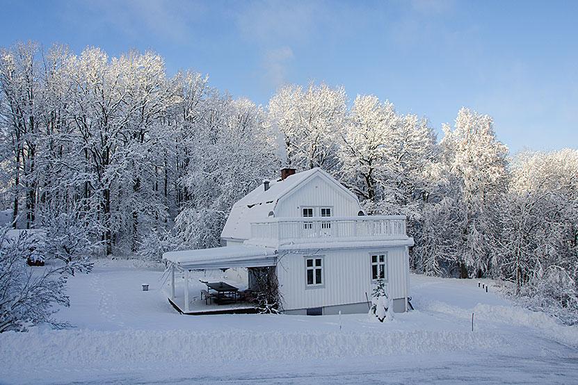 Vintermagi