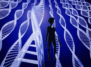 Código genético: vínculo común