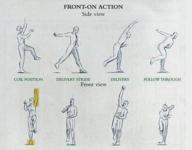 biomechanics is cricket Browse biomechanics news, research and analysis from the conversation.