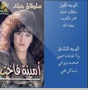 Amina Fakhet-Soultan Hobek