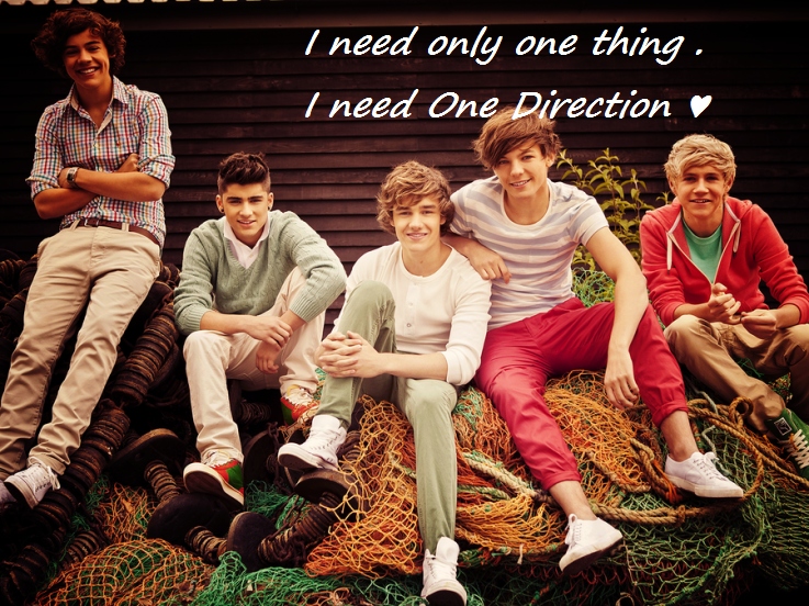 I need only one thing. I need One Direction ♥