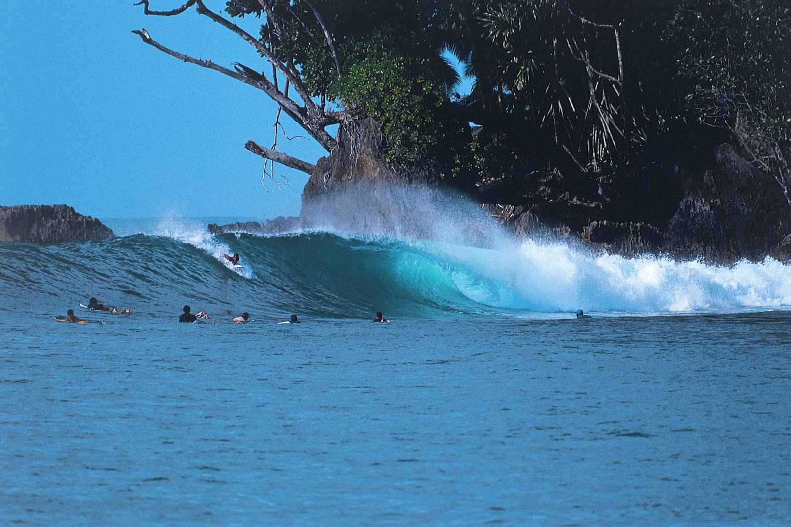 Things to Know about the Mentawai Islands - nesia.id
