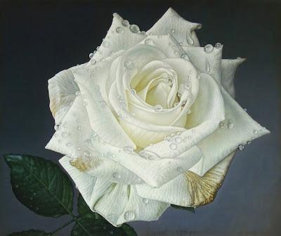 cuadros-hermosas-rosas