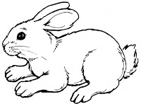Rabbit Realistic Coloring Pages Printable