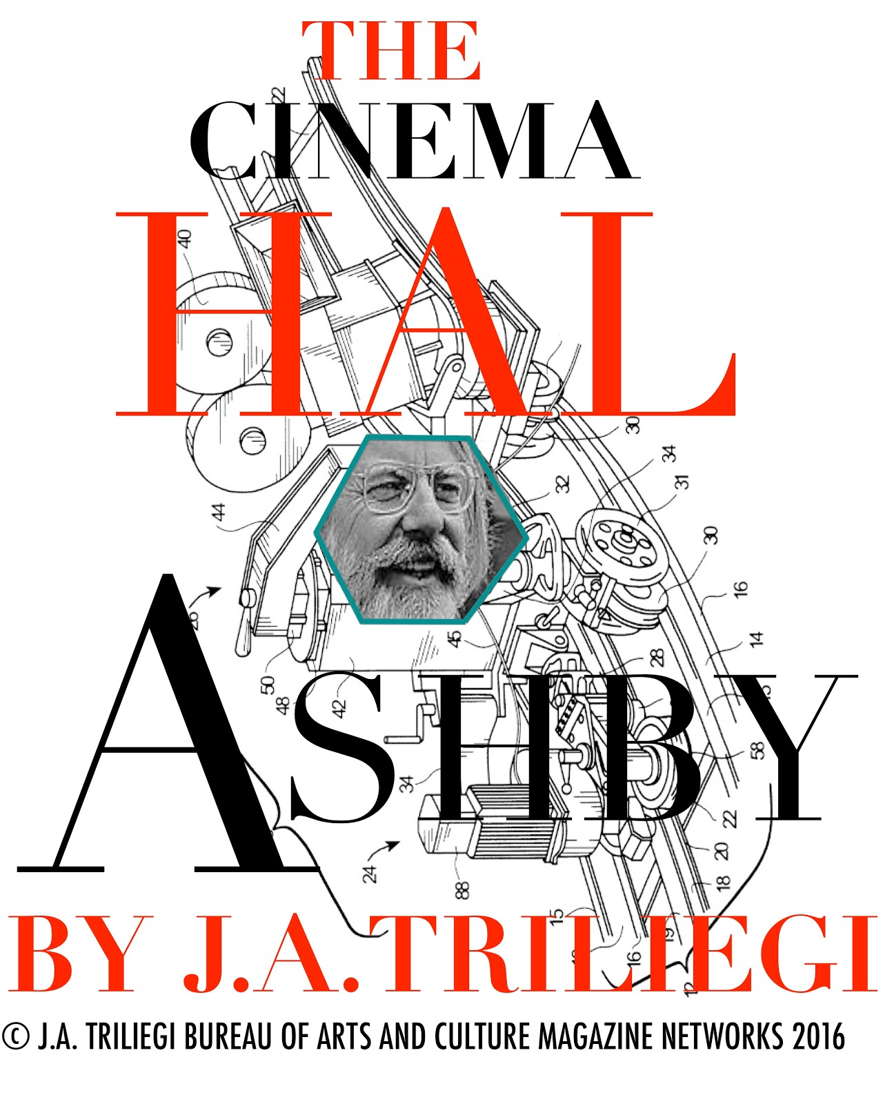 HAL ASHBY The FILM Director