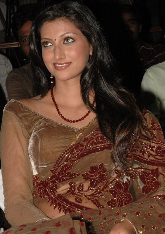 Latest Hot Bikini Hamsa Nandini in Cool Saree Thigh Show