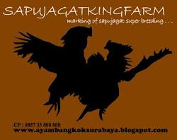SapuJagatKingFarm