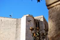 Catedral de Girona. Bruixa de la Catedral. Torre de Carlemany. Llegendes. Girona.
