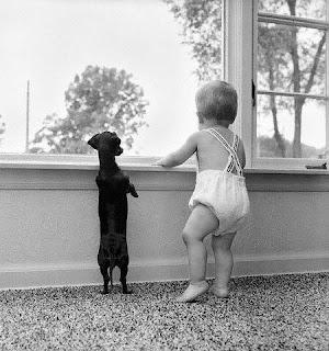 el perro el mejor amigo...del bebe