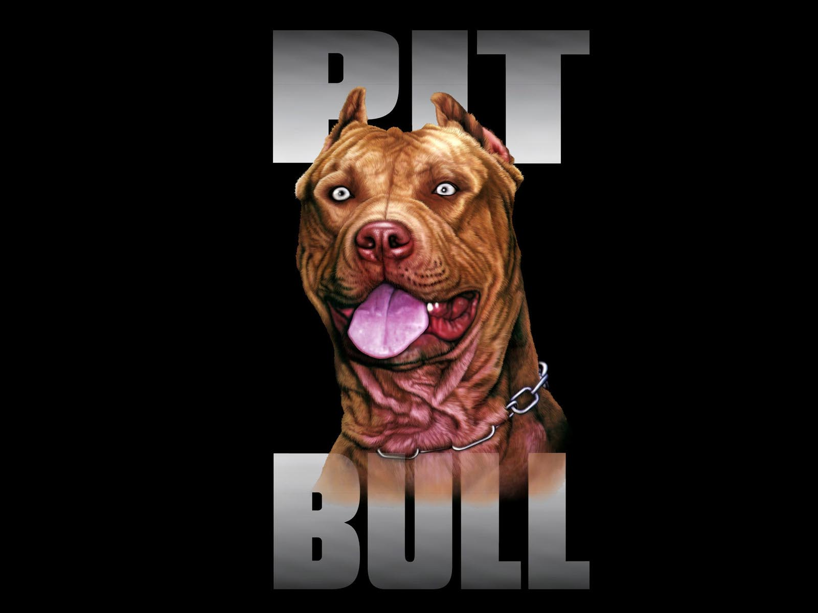 Pic New Posts Wallpaper Apbt