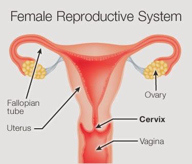 Phương pháp điều trị dính buồng tử cung