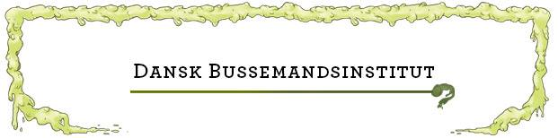 Dansk Bussemandsinstitut