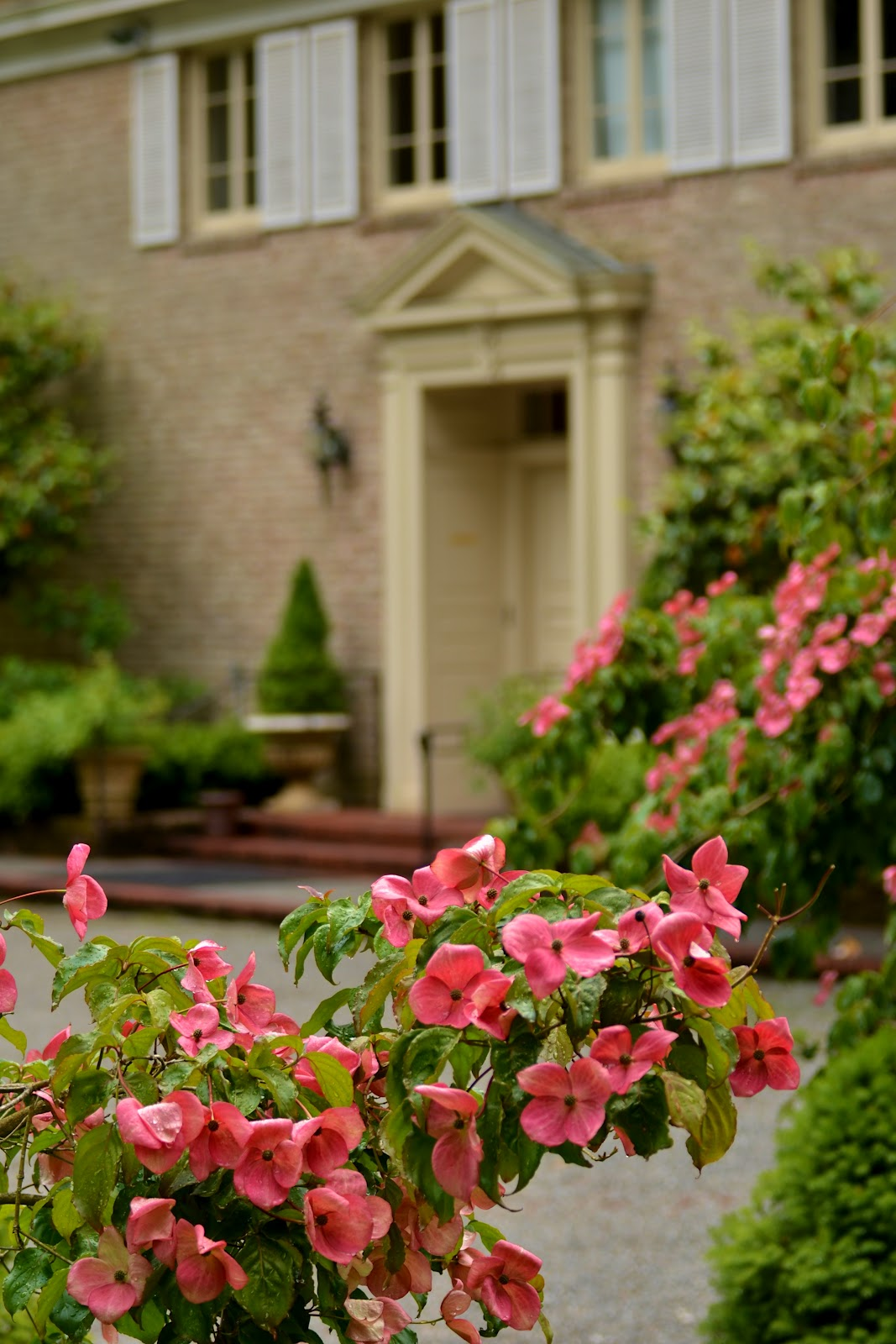 Bonnie King Photography: As I See It: Lakewold Gardens - Tacoma, WA