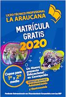 Liceo La Araucana