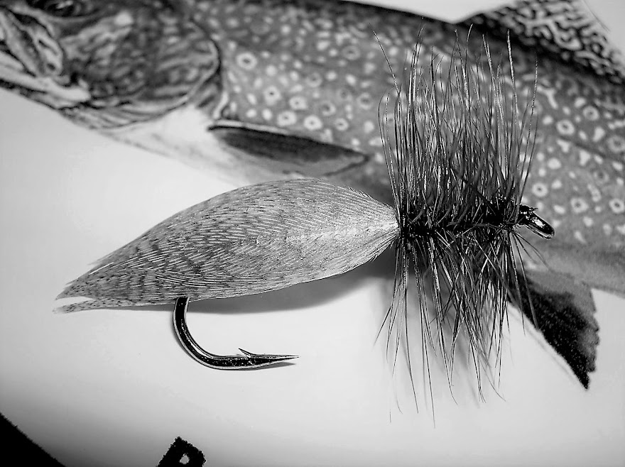 The Hornberg...A fly created by Frank Hornberg from Wisconsin back in 1920. I believe it is unoffic