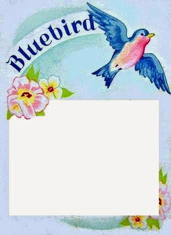 Bumble button free vintage bluebird brand button cards for you to free vintage bluebird brand button cards for you to print m4hsunfo
