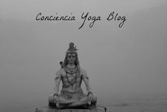 Yoga Blog: notas, libros, textos