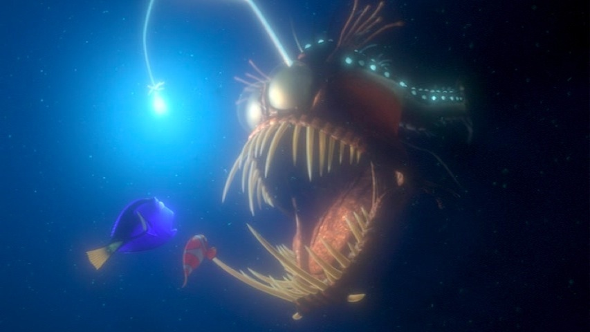 World of wonder explorations in teaching and learning for Nemo light fish