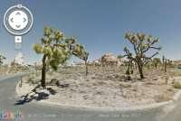 Parchi nazionali california