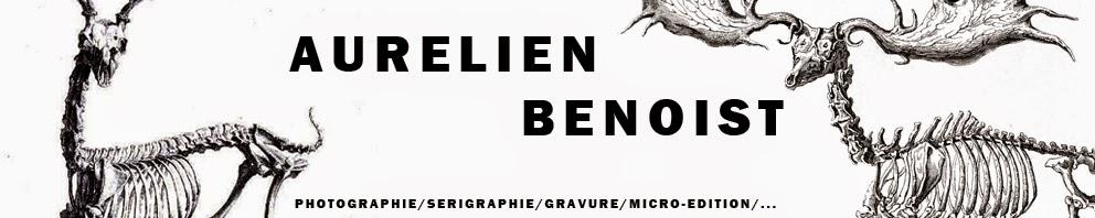 Aurélien Benoist
