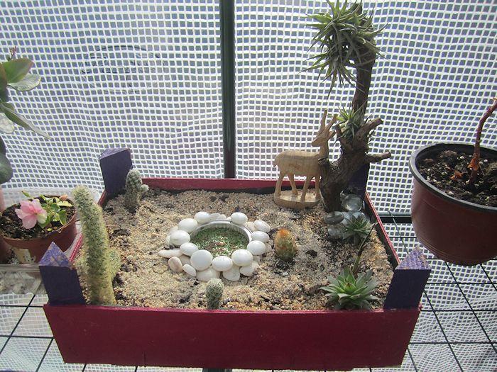 Manualidades puri diaz jardines en miniatura for Jardin zen miniatura