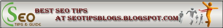 SeoTipsBlogs -
