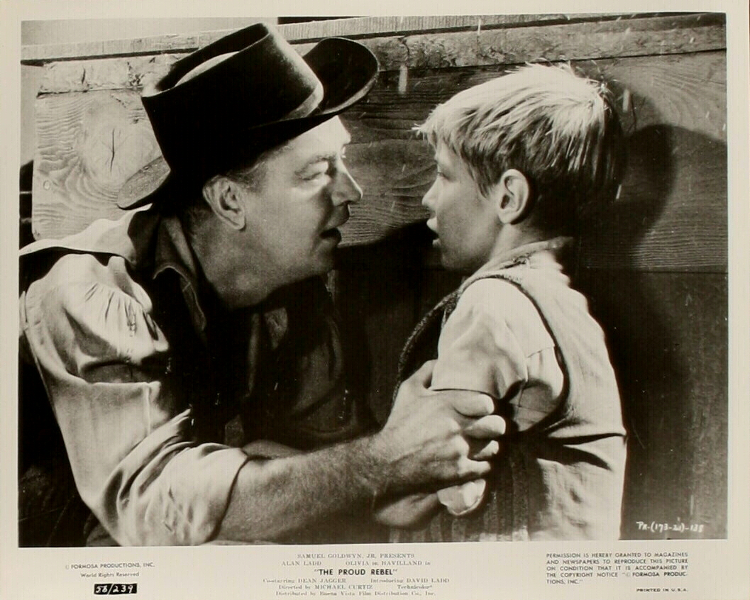 Tonight s movie the proud rebel 1958 at the tcm classic film