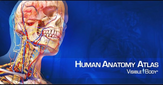 Download Visible Body 3d Anatomy Atlas V1 1 0 Apk Game And