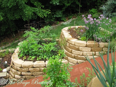 The Sage Butterfly: How We Built Our Tiered Raised Bed