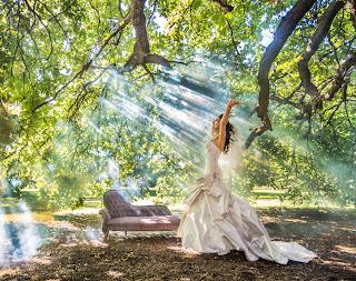 professional wedding photographers: three tips to help