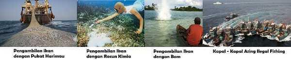 Macam-macam Pengambilan Ikan Secara Ilegal di Indonesia