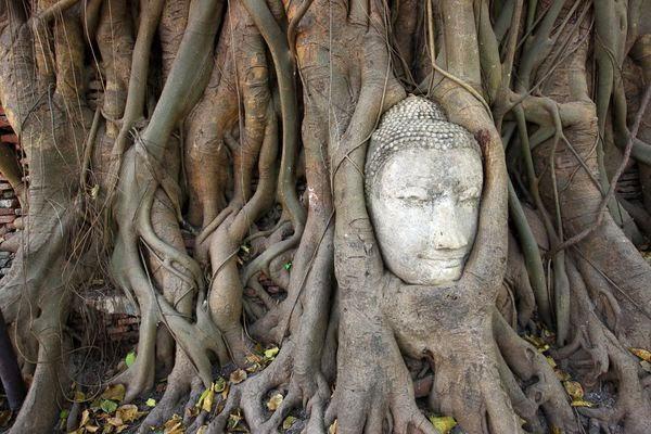 Ayutthaya Historical Park, UNESCO World Heritage, Tourism Authority of Thailand, Copyright 2011