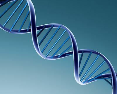 Acidos nucleicos en biologia molecular
